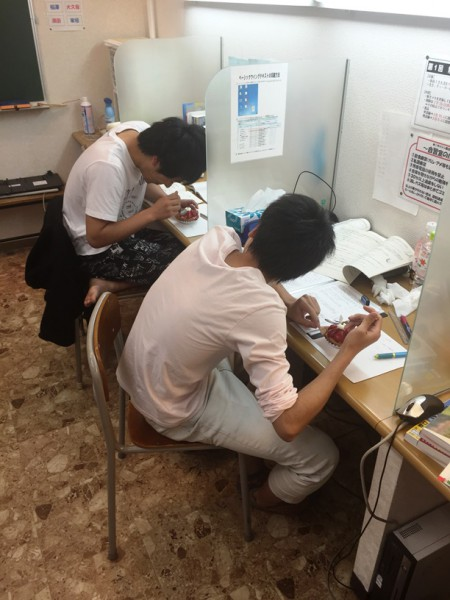 shinshira-koukousei(3)