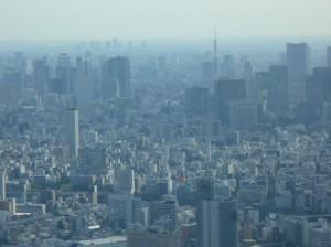 スカイツリーにて、東京タワーを臨む