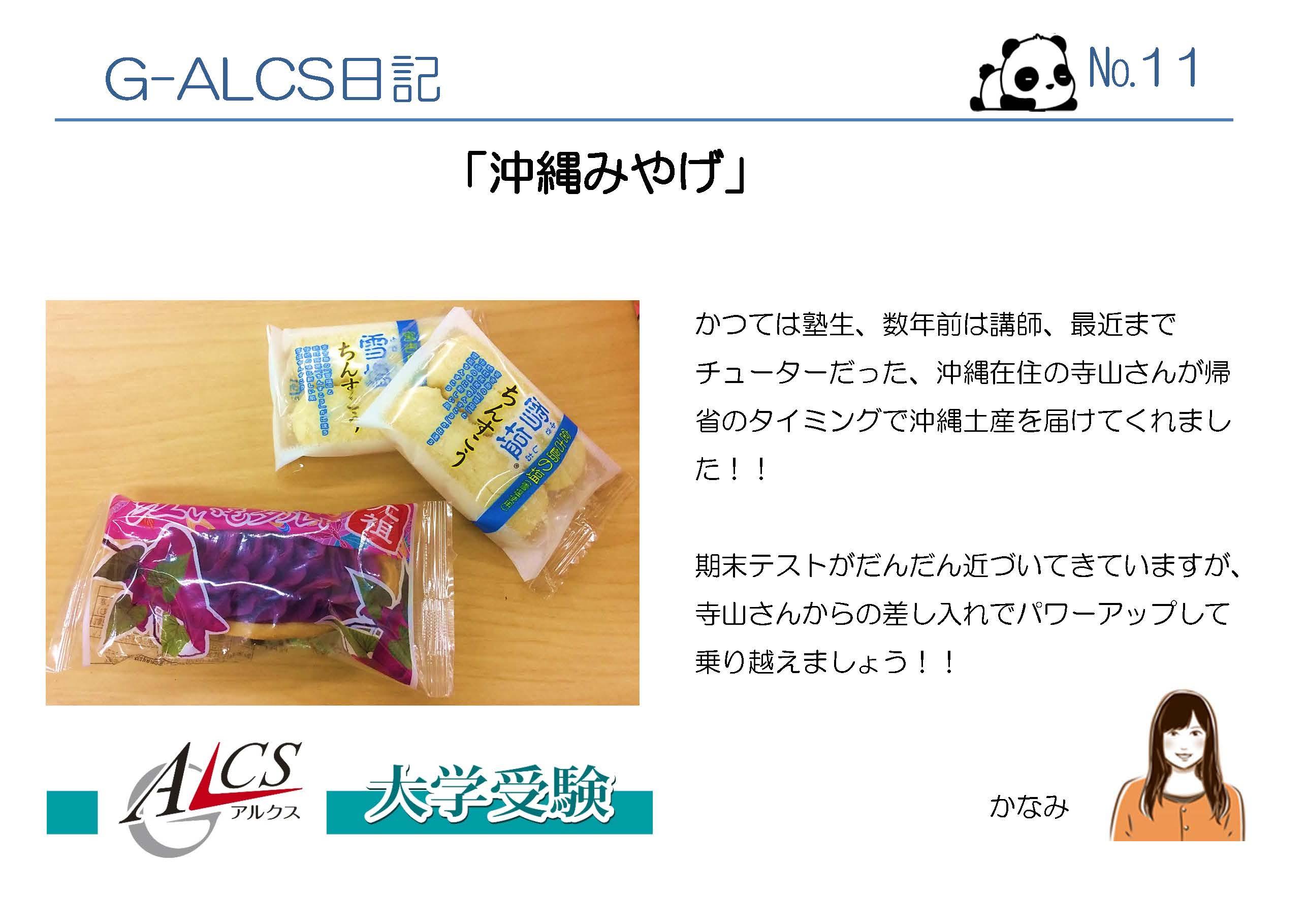 G-ALCSブログ 1代目_ページ_11