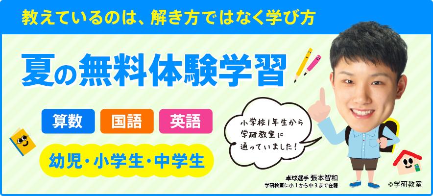 top_main_summer_free
